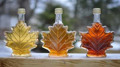 Sweet news from Ohly: NEW IP Maple Syrup Powder launches